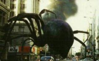 《蜘蛛3D》(预告片)