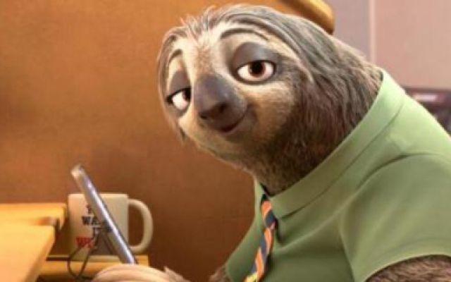 《疯狂动物城》各种树懒闪电片段大合集, 看一次笑一次