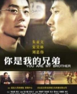 你是我的兄弟