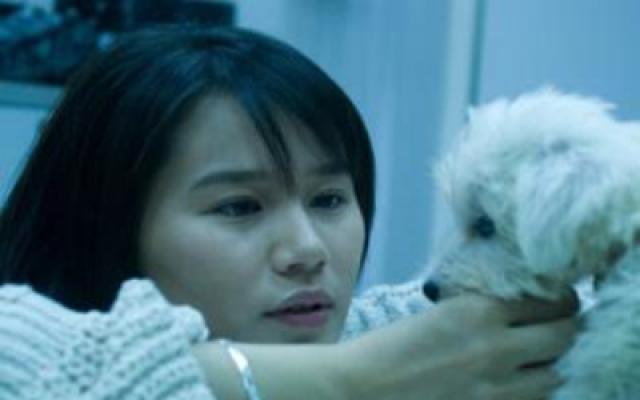 《我的狗狗我的爱》完整版