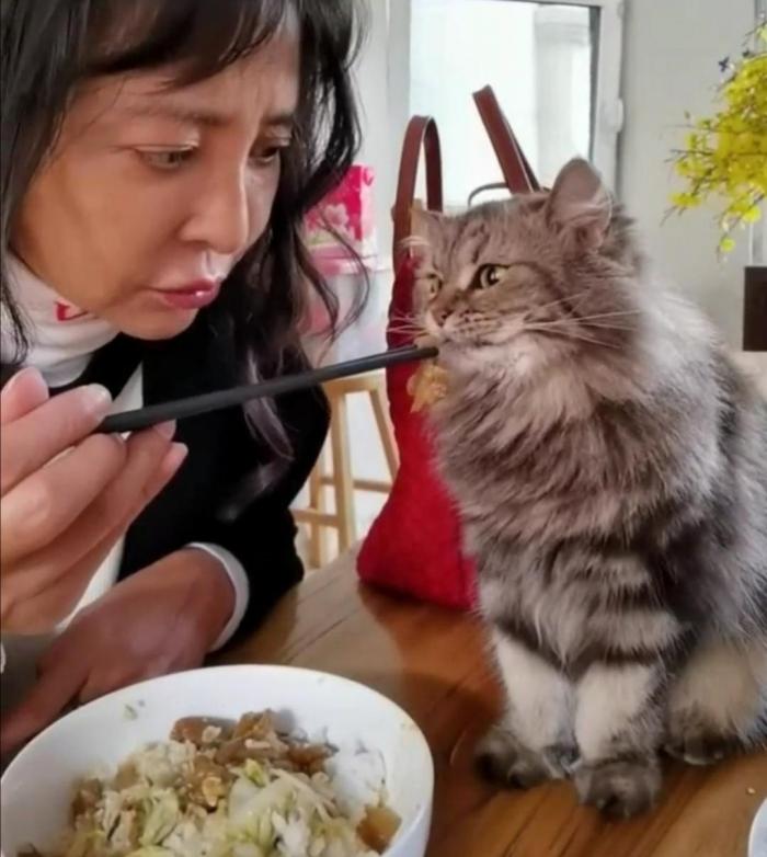 老戏骨李勤勤和宠物同用一双筷子?网友:接受不了