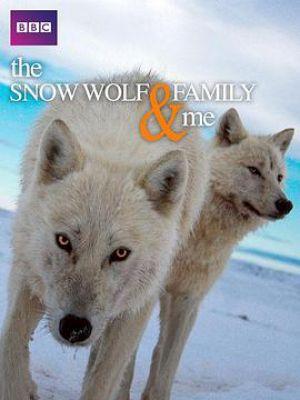 我和雪狼家族