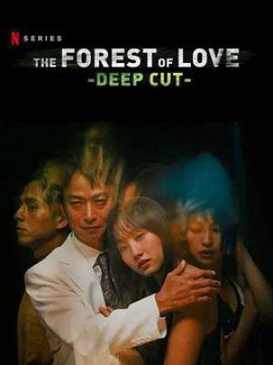 在无爱之森呐喊:深入密林