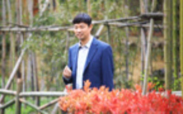 王迅《花繁叶茂》被赞接地气,44位明星祝贺,引发年轻观众追剧!