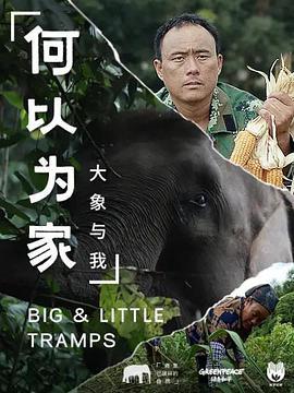 何以为家:大象与我